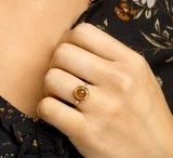Ring carneool_